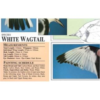 Harou Uchiyama Songbird Patterns  White Wagtail