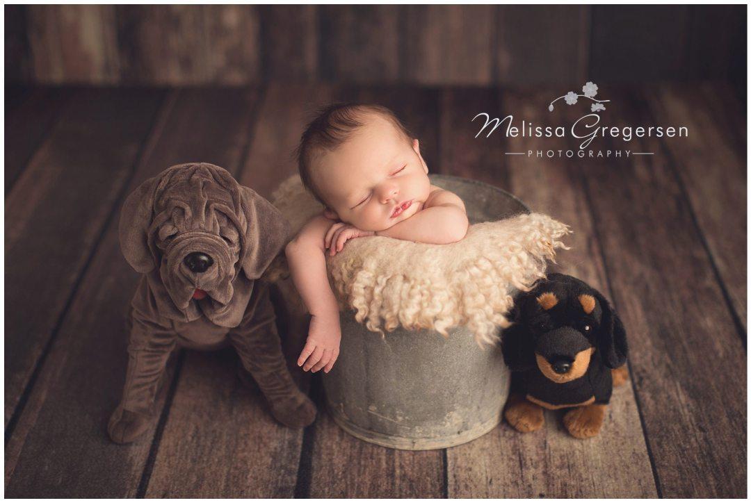 Kalamazoo Newborn Baby Photographer Gregersen Photography