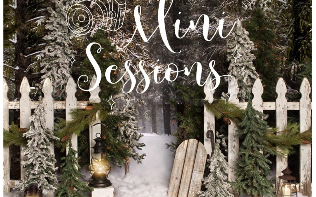 2018 Christmas Holiday Mini Photography Sessions in Kalamazoo Michigan