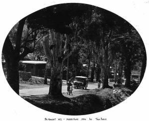murrays-road