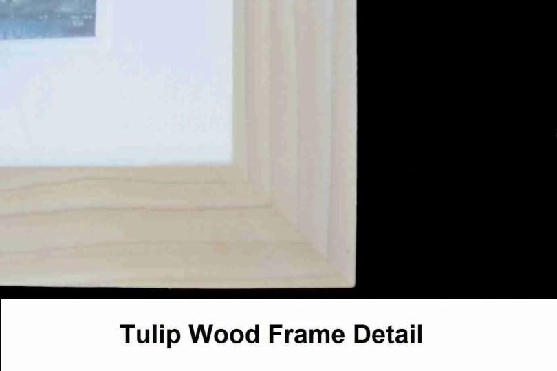 Tulip Frame Detail