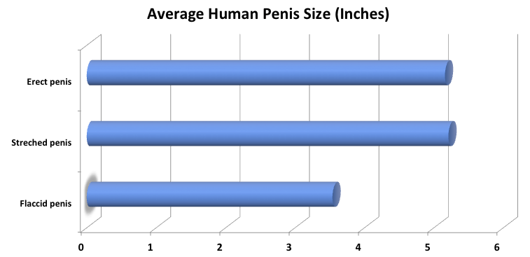 Your penis is too big