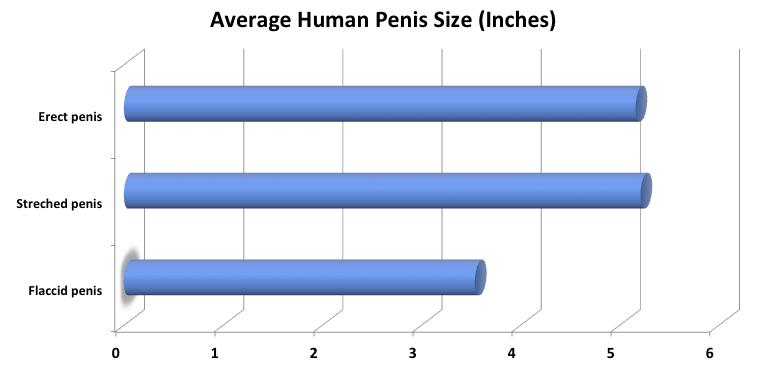 Big flaccid penis assured, that