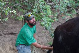 Josh checks to see if the calf is in the right position. He heard the calf gasping for air so a vet was called.