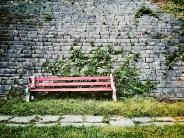 Amphitheatre Bench
