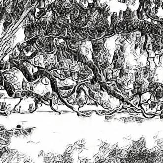 Un vieux chêne [poème]