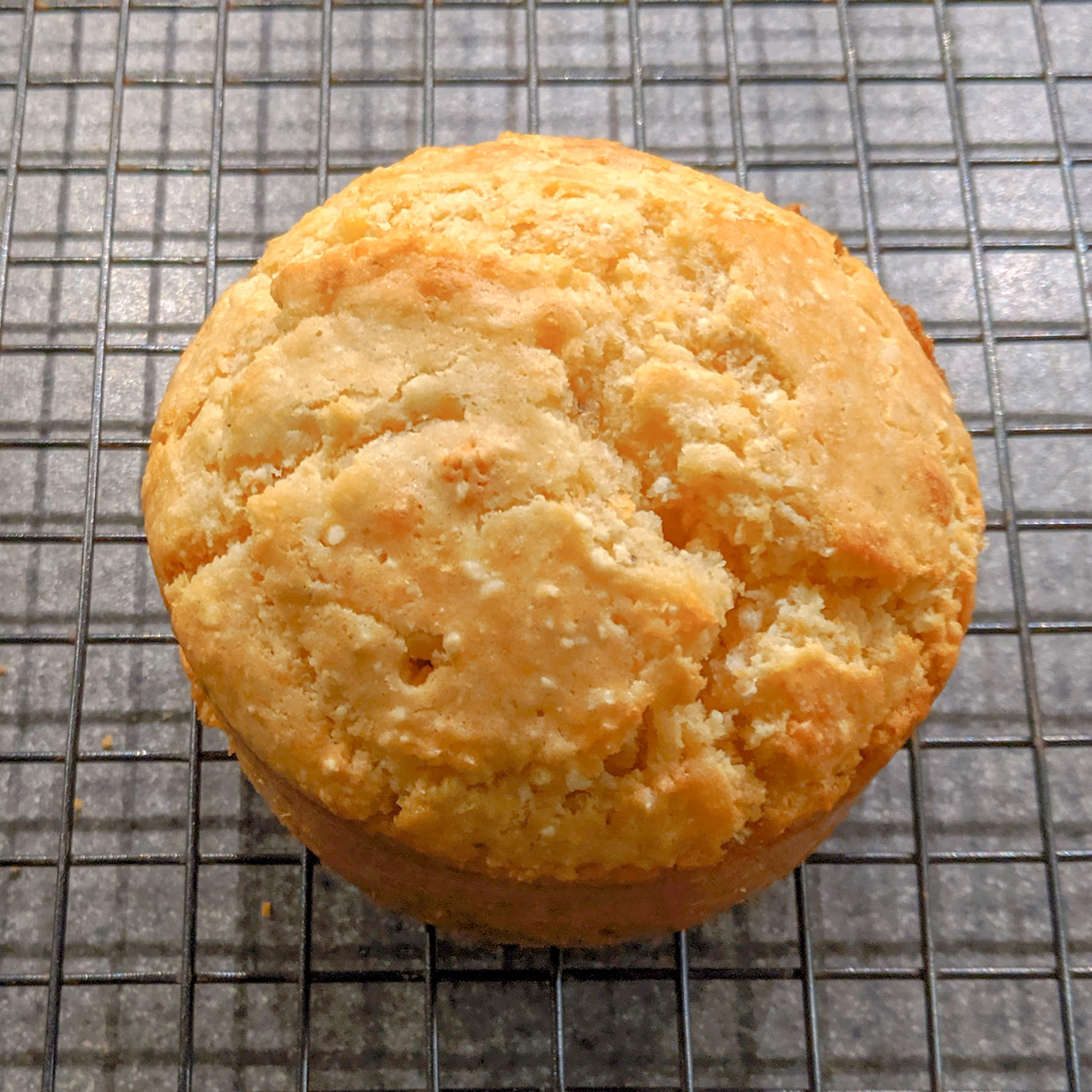 Whole corn muffin, beautiful golden color