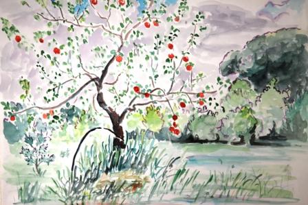August 10 Apples