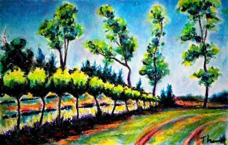 English Estate Vineyard