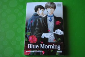 Hidaka Shoko--Blue Morning V05