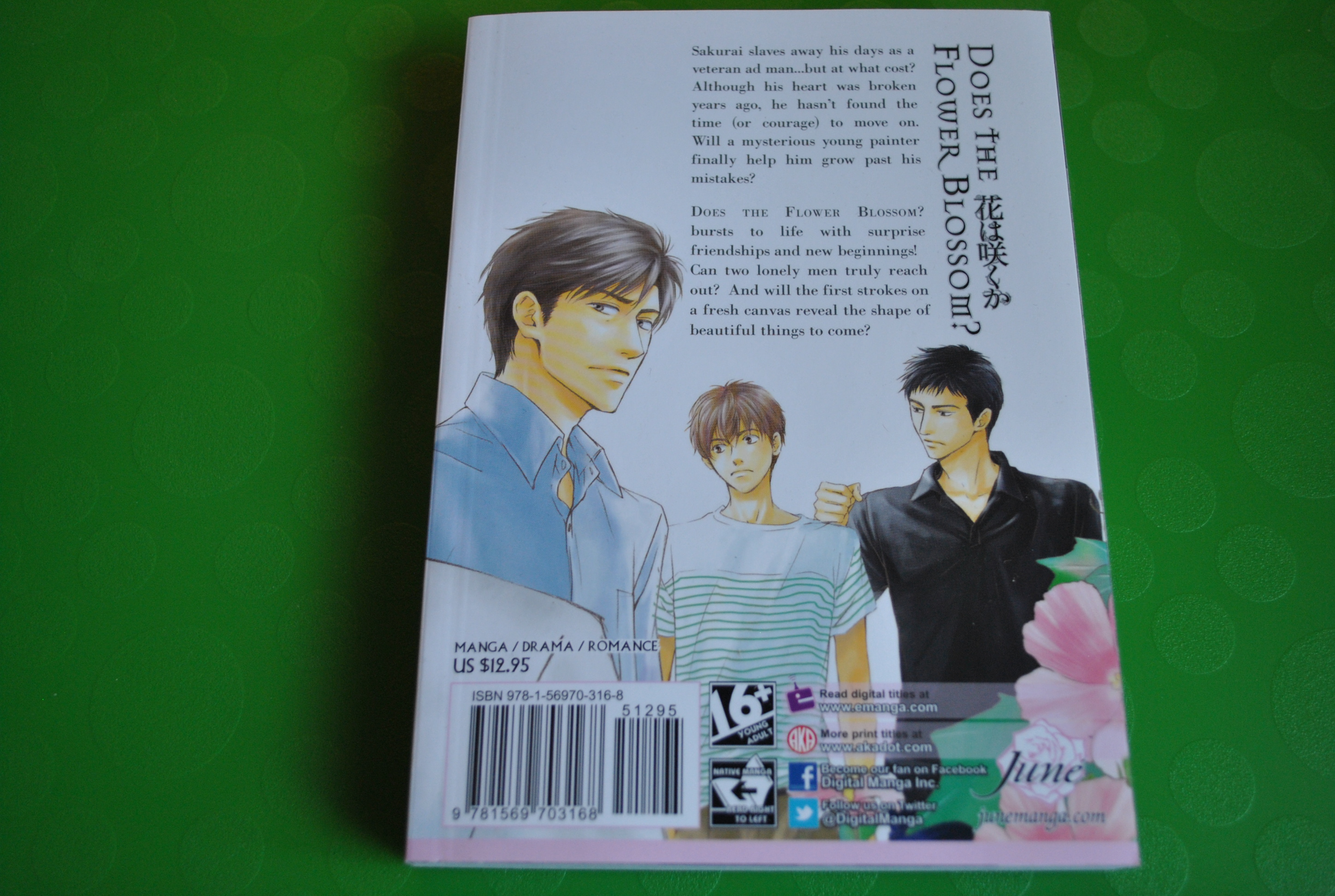 Hidaka Shoko--Does the Flower Blossom V01-02