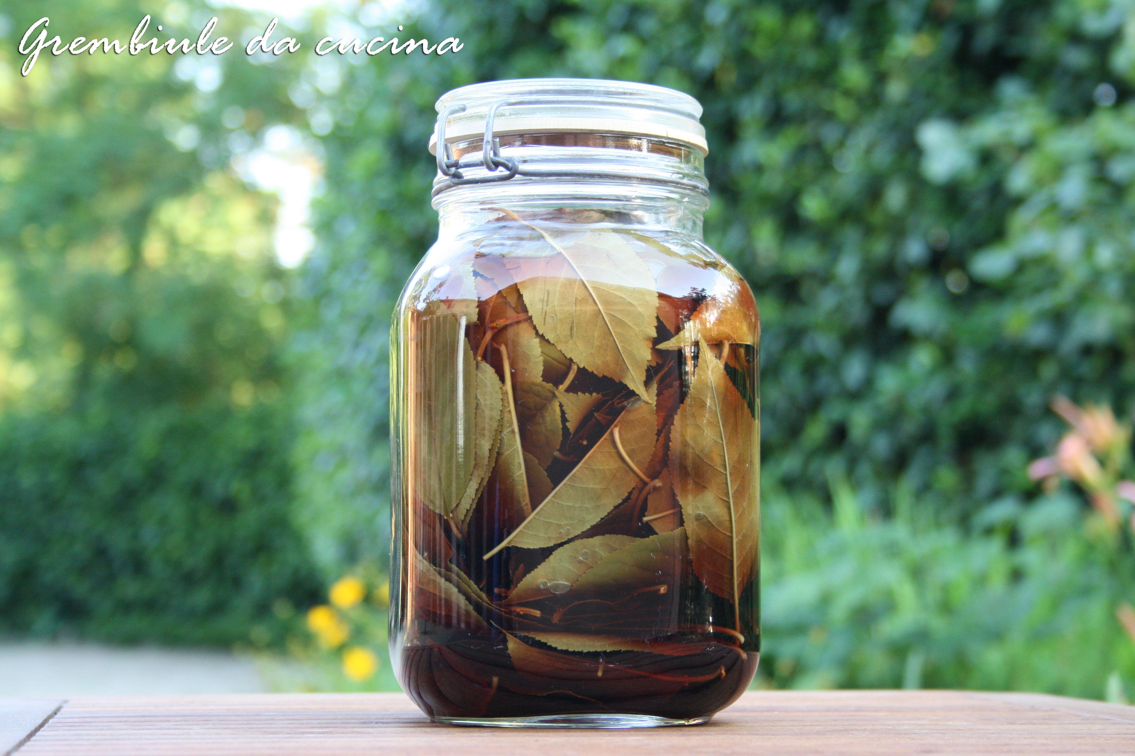 Liquore cento foglie di amarena  Grembiule da cucina