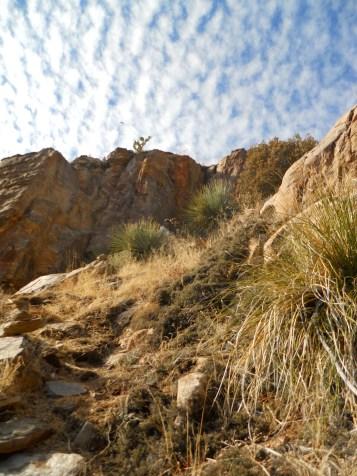 Finger Rock trail in Tucson, AZ