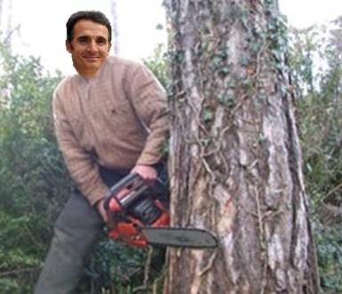 E. Piolle (Verts/PG) rase des arbres vénérables.