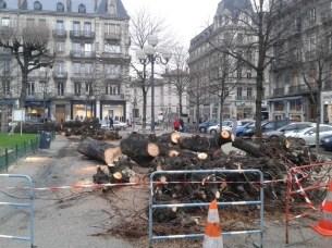 place Victor Hugo : massacre de nos marronniers centenaires.