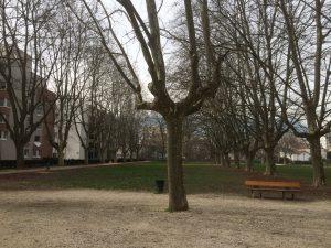 Un exemple d'urbanisme équilibré, le quartier Reyniès-Bayard réalisé par la municipalité Carignon: un bâtiment HLM de 80 logements dans un quartier dominé par les propriétaires, 5,5 hectares de parc, un gymnase, une maison de personnes âgées dépendantes