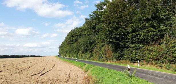 De grensweg langs het Reichswald naar Grafwegen