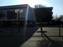 Monumental, repräsentativ, ein Zeichen der Macht. In Sandhausen wachsen die Bäume sogar auf Beton.