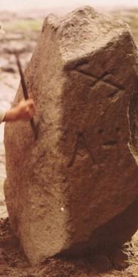 """Farbbild von einem Forstgrenzstein aus Granit mit der Inschrift (Wolfsangel) und darunter """"AH"""" = """"Amt Harburg"""""""