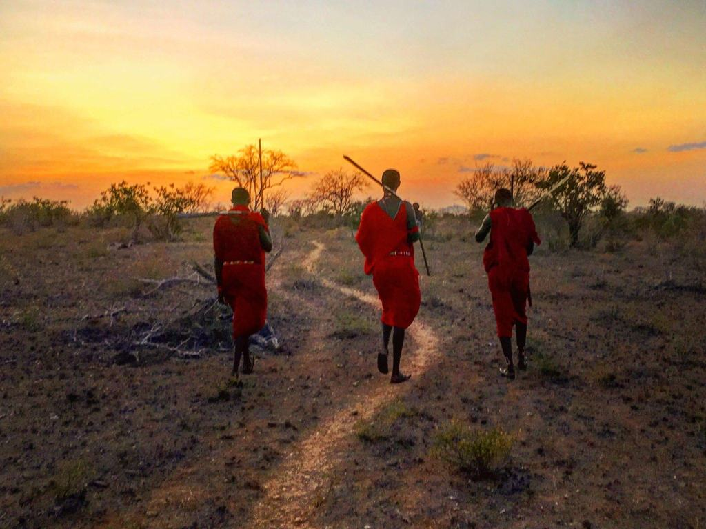 Sunset walk in the savannah with the Maasai