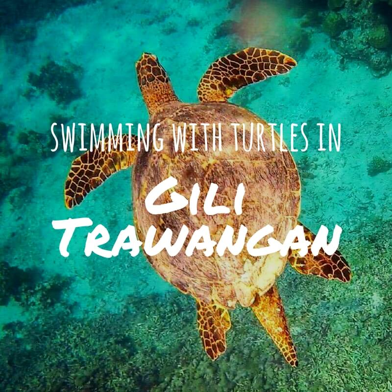 Swimming With Turtles In Gili Trawangan: A Snorkelers Paradise