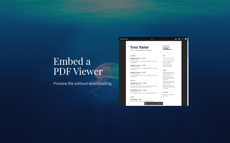 Embed pdf in wordpress without plugin download