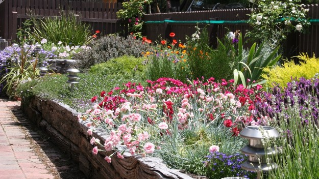 The spring back border - profusion of colour