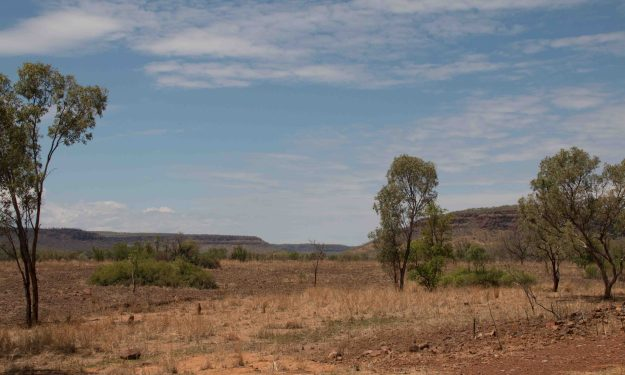Typical Kimberley country - flat plains and flat hills