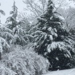 What to Make of Unseasonable Events
