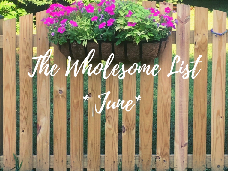5 Wholesome Things I Learned in June