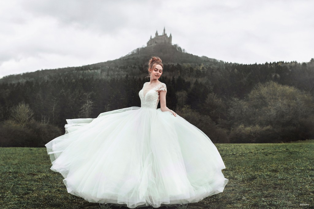 Disney dress Cinderella