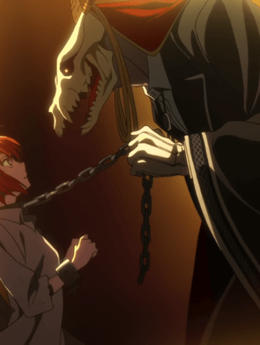 the ancient magus bride cover 2