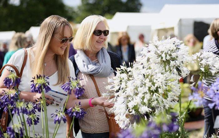 Rosemoor Flower Show