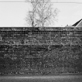 the-wall