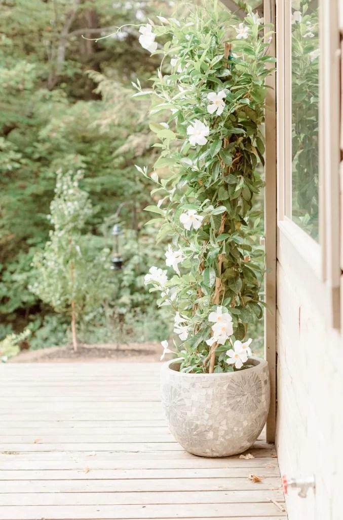 Garden House - Amy &. Nick | Le Belvedere at Wakefield in Quebec - Ottawa Wedding Venue - Grey Loft Studio