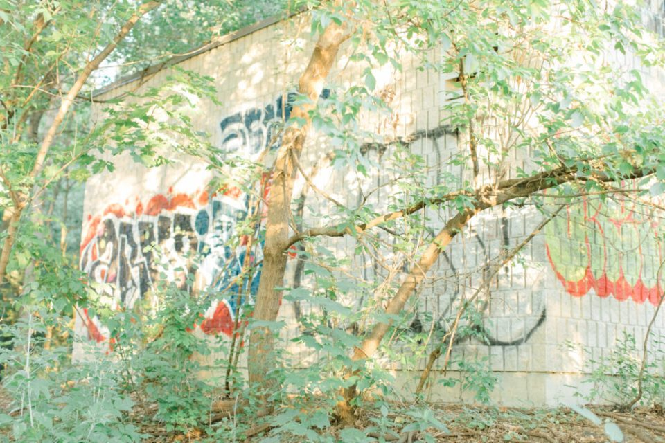 Graffiti in the Forest - Hidden Gem