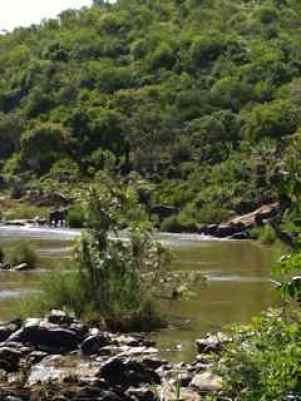 Elephanten - Mit dem Privatflugzeug in den Kruger