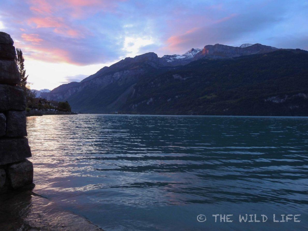 Brienzersee, Switzerland