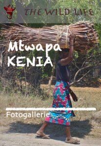 Fünf Wochen Urlaub in Mtwapa Kenia. Einst ein Paradies für Expats. Heute eine chaotische Stadt, wo die Armut sichtbar und das Leben der Reichen unsicherer wird. Fotos einer Stadt mit zweifelhaftem Ruf, wo das Leben der einen von Sextourismus und Gewalt gezeichnet ist und sich die anderen am Palmenstränden sonnen.