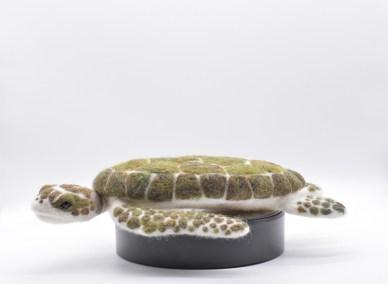grey-wren-studio-large-kirsties-handmade-seaturtle-2