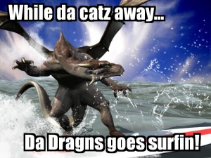 dragonsurf2