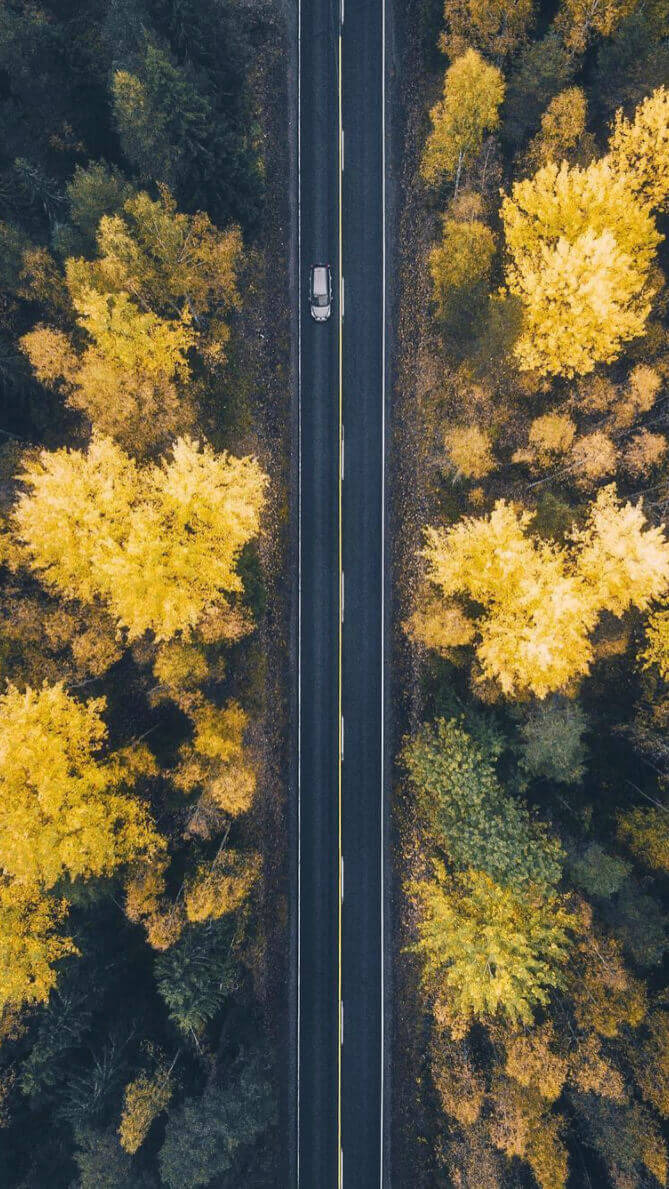 Hneri Fall Leaves Drone Wallpaper
