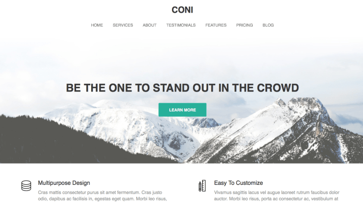 Coni WordPress Theme Review Screenshot