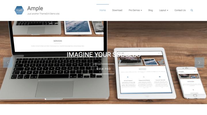 Ample WordPress Screenshot