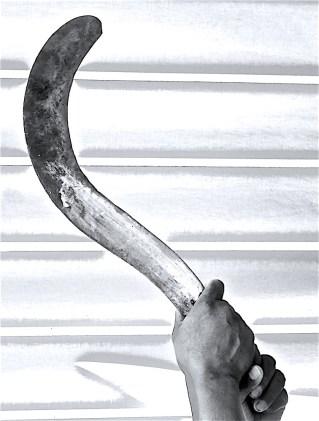 Eduardo's machete.