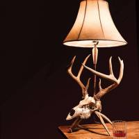 Make Your Own Euro Skull Mount Lamp  The Hunting page