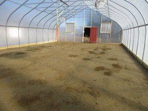 Inside floor compacted and ready for groundcloth