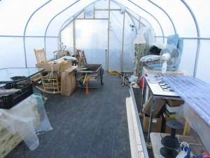 One of the 2 smaller greenhouses, which will later serve as our work area