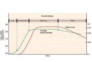 Crescita Batterica Reverse