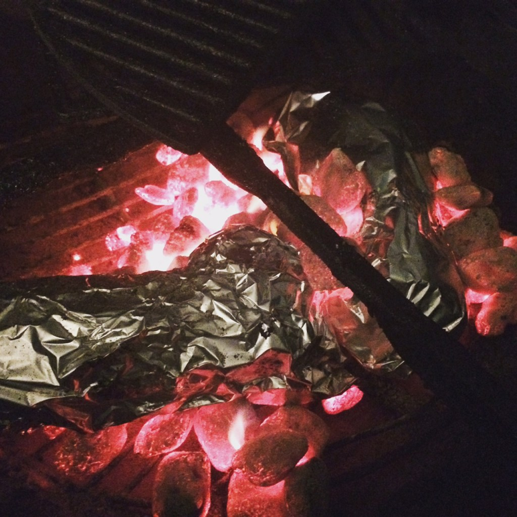 Put your hobo packets directly over the coals when camping or grilling.